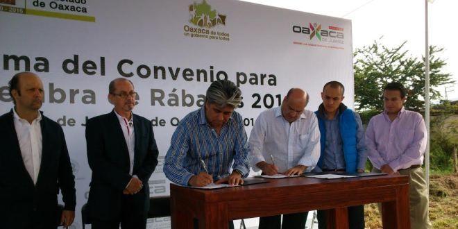 Oaxaca Digital | Comisión Estatal Forestal y Municipio de Oaxaca de Juárez rumbo a Noche de Rábanos