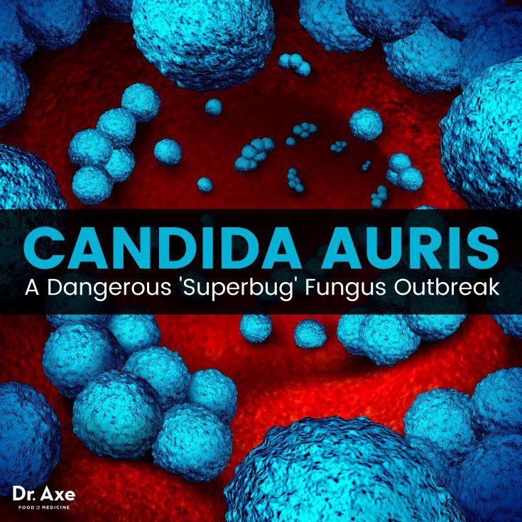 236 besten MRSA and Candida Auris Bilder auf Pinterest ...
