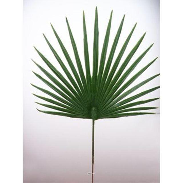 Image Feuille palmier Chamaerops artificielle H 53 cm D 36 cm ext ARTIFICIELLES