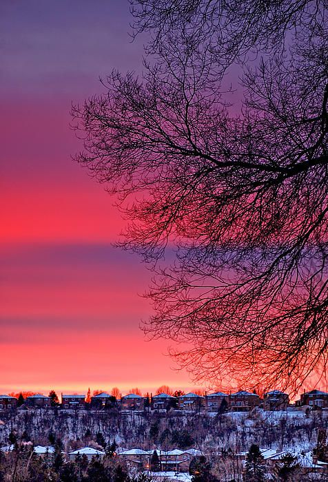 Looking across the valley from my backyard in Bolton, Ontario at a vibrant winter sunset.