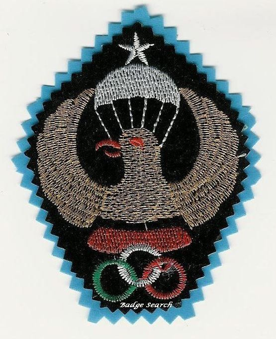 ORIGINAL IRAN IRANIAN PARACHUTE AIRBORNE CLOTH PATCH Blue outer ring Large