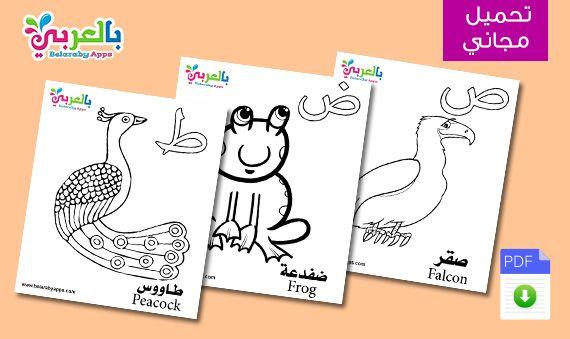بطاقات الحروف العربية مع الصور للاطفال تعليم اطفال الحروف الهجائية مع الكلمات بالعربي نتعلم Frog Art Comics
