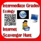 Updated Ecology Internet Scavenger Hunt - now with 3 versions, including a QR code version - Free download