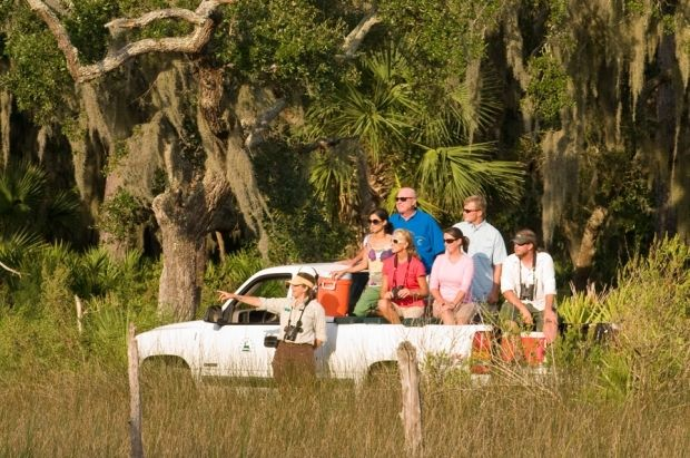 Day Trip To Little St Simons Island