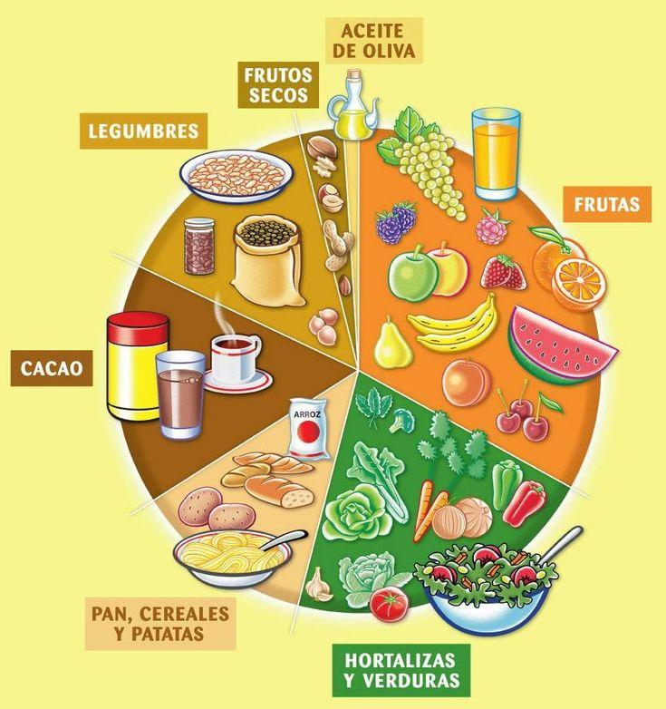 Clasificación de los alimentos -  La clasificación de los alimentos puede realizarse utilizando diferentes criterios: • Según su origen y procedencia: en alimentos de origen animal y vegetal. • Según su composición mayoritaria en proteínas, lípidos o hidratos de carbono.  • Según su aporte energético: hipocalóricos o hipercalóric...