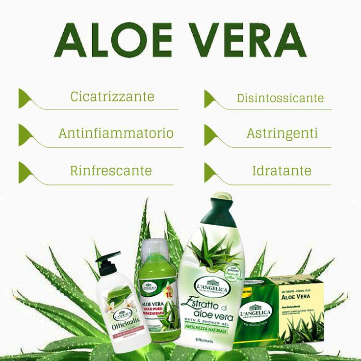 Aloe Vera con le sue proprietà e i prodotti dell'Istituto Erboristico L'Angelica #ALOE #VERA #prodotti #proprietà