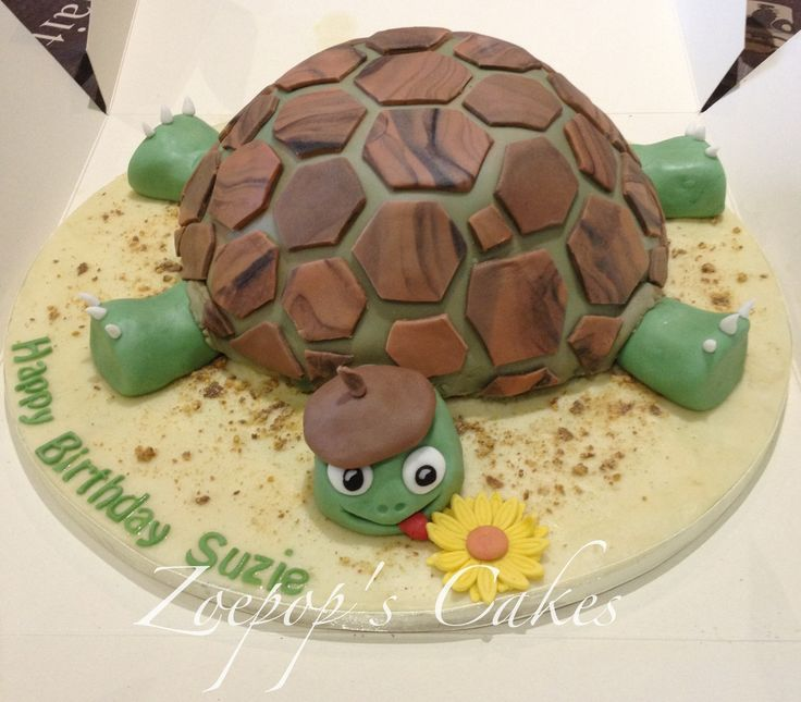 Tortoise - Tortoise birthday cake for my sister x
