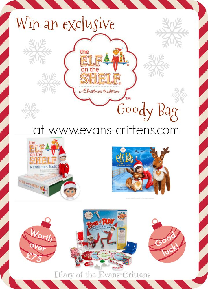 Win an exclusive Elf on the Shelf Goody Bag at Diary of the Evans-Crittens.   www.evans-crittens.com
