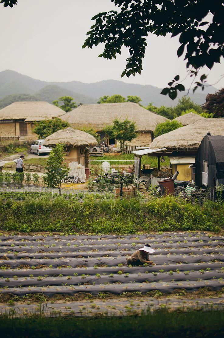 Andong Folk Village (source)