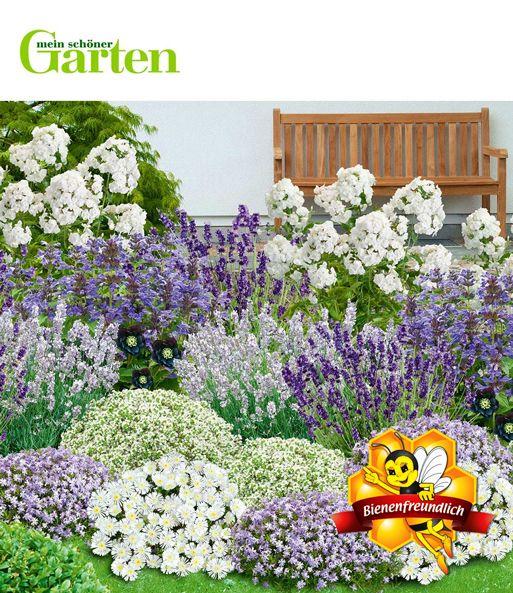 Mein Schoner Garten Bienenfreundliches Staudenbeet Gartenlandschaftsbau Innereskind Garten Gartengestaltungideen Gart Staudenbeet Garten Garten Bepflanzen