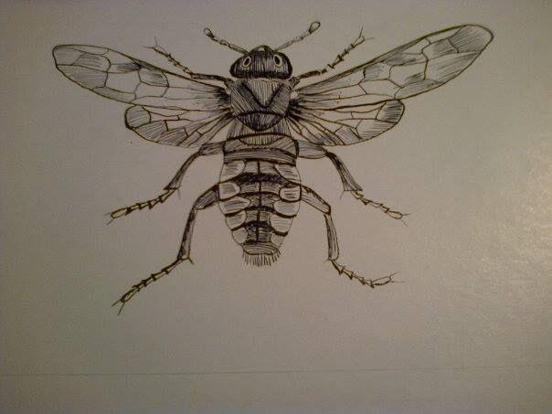 mosca tecnica plumilla con tinta china