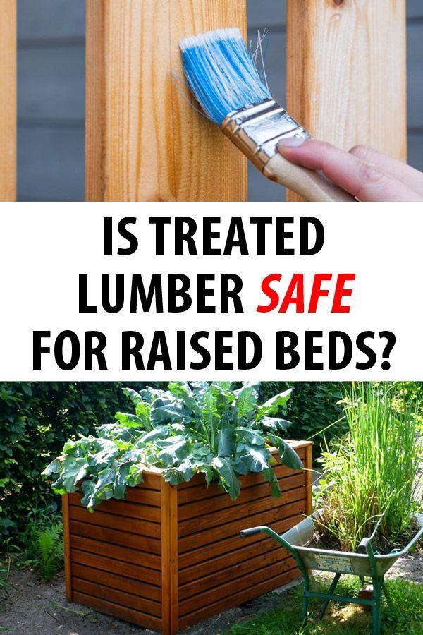 c4c3040a158b9acc00a8a0f9266505a0 - Is Pressure Treated Wood Bad For Gardens