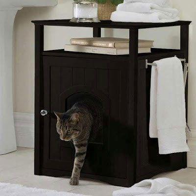 Katt i badrumsmöbler