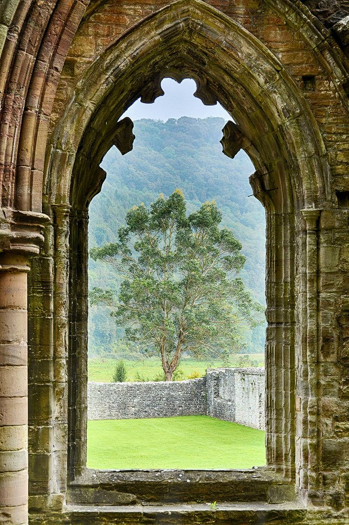 Tintern Abbey, Monmouthshire, Wales by PeterToft Worth a visit if you're staying at our Forest of Dean location