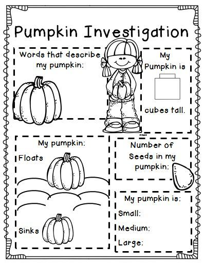 Free Printable Fall Worksheets For 3rd Grade : Best images about life cycle of a pumpkin on pinterest