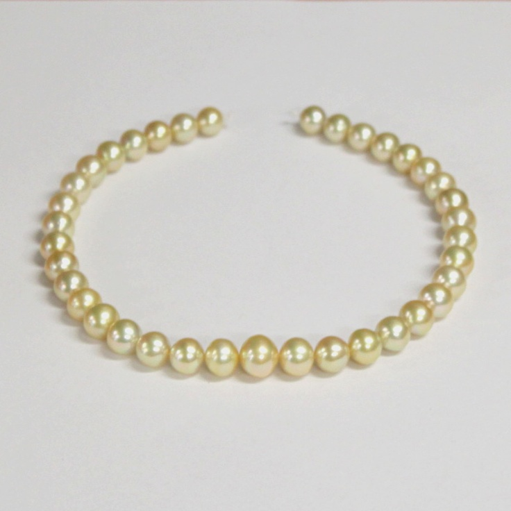 Meet Trina. Deep gold colour with awesome lustre. The strand is graduated from 10mm to 15mm in the centre.