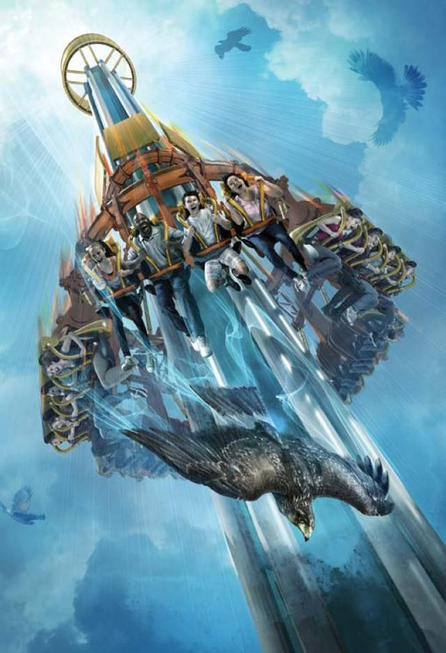 Heading to a Florida Theme Park? Check Out the 2014 Ride Guide.: Busch Gardens Tampa: Falcon's Fury