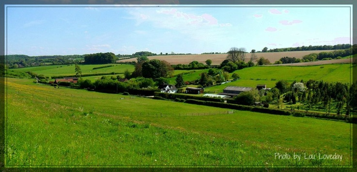 Countryside around Chesham.  Photograph by Lou Loveday.