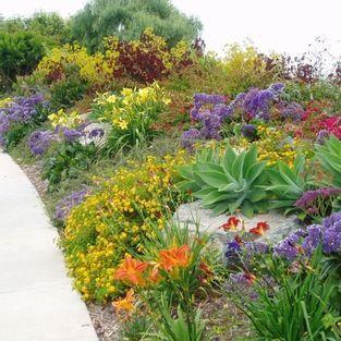drought tolerant flower garden plans Drought Tolerant
