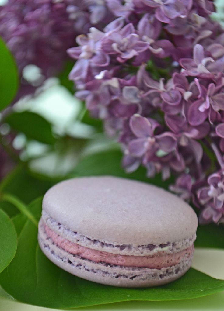Cassis macaron in pale lavender with lilacs. By Bake Sale