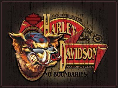 Lamina Con Licencia De Original Harley Davidson. #roostermoto #retrostyle
