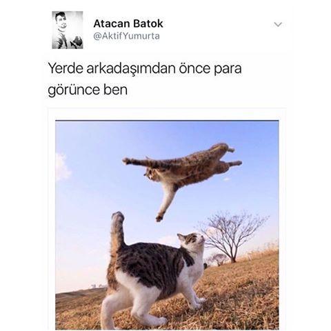 Daha fazlası için takipte kalın �������� #mizah #caps #karikatür #mizahtürkiye #komedi #komik #komik #eğlence http://turkrazzi.com/ipost/1517511817457525802/?code=BUPSPU2A2Qq