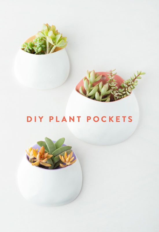 DIY wall planters, plant pockets from air dry clay #diyproject
