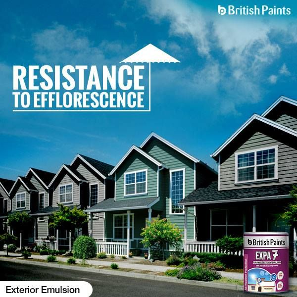 Our paints are highly resistant to efflorescence and look brand new for a long time!