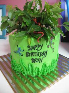 birthday cake supplies sunshine coast 1 on birthday cake supplies sunshine coast