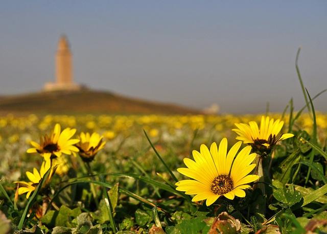 Torre de Hercules La Coruña Spain :)