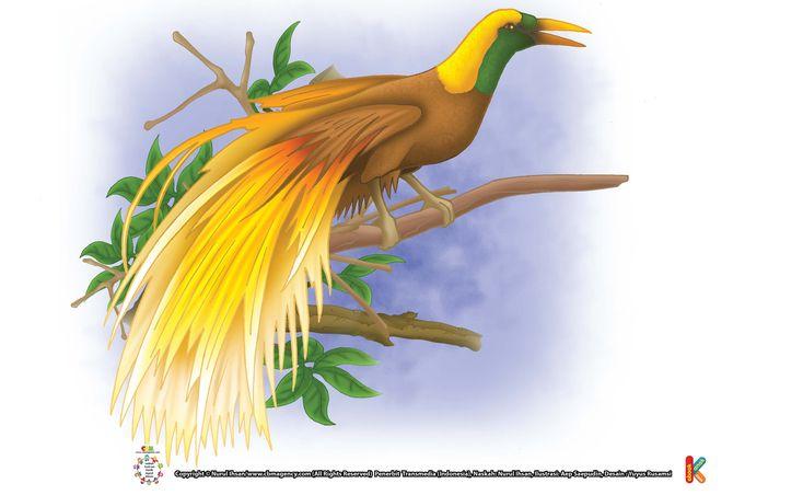 Cendrawasih, Kenapa Disebut Burung dari Surga