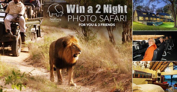 WIN A 2 NIGHT PHOTO SAFARI FOR YOU AND 3 FRIENDS at Indlovu River Lodge - Big 5 Photographic Game Reserve! To enter: 1) Tag 3 friends in the comments section that will join you if you win this amazing prize.  2) Guess how many sunken photography hides we have at Indlovu River Lodge. (Find answer here: http://bit.ly/2pmHXX7) Winner announced 30 June 2017.  T&C's apply.