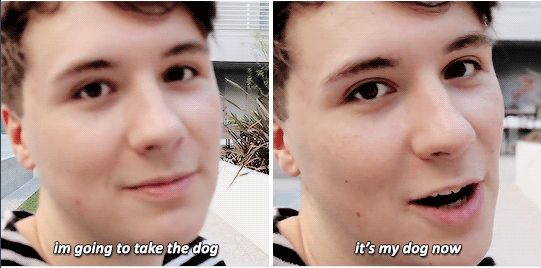 Catrific's video Dan and Phil Play with My New Puppy!!!<<he will definitely kidnap the puppy