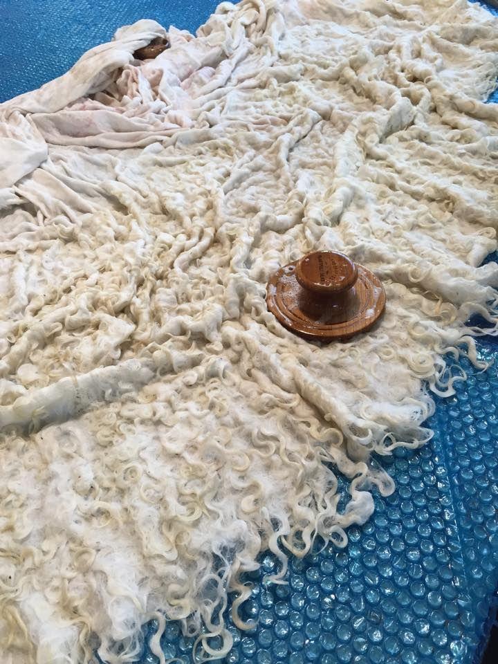 Making a raw wool locks shawl by wet felting with the Palm Washboard -- in Robbin Firth's HeartFelt Silks Studio
