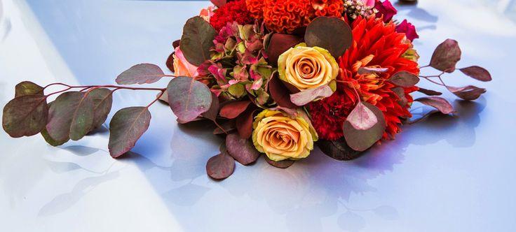 Florist: https://www.facebook.com/BorokaVirag