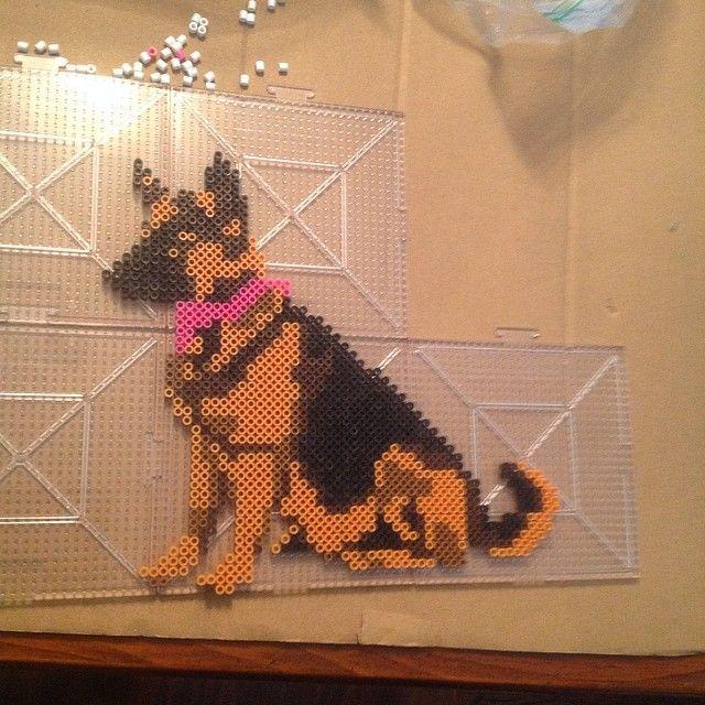 knitting pattern german shepherd - Google leit ...