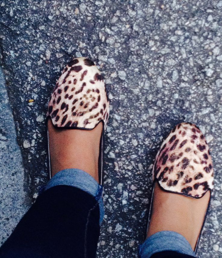 Leopard mood | 1 May