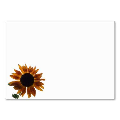 I seguro ama la belleza de los flores del girasol. Produje este girasol de la belleza del otoño de la semilla en mi jardín del girasol en Jacksonville, la Florida. Sobre de 100 plantas del girasol, amontoné apenas sobre mil fotos. Espero que usted goce éste que he seleccionado.