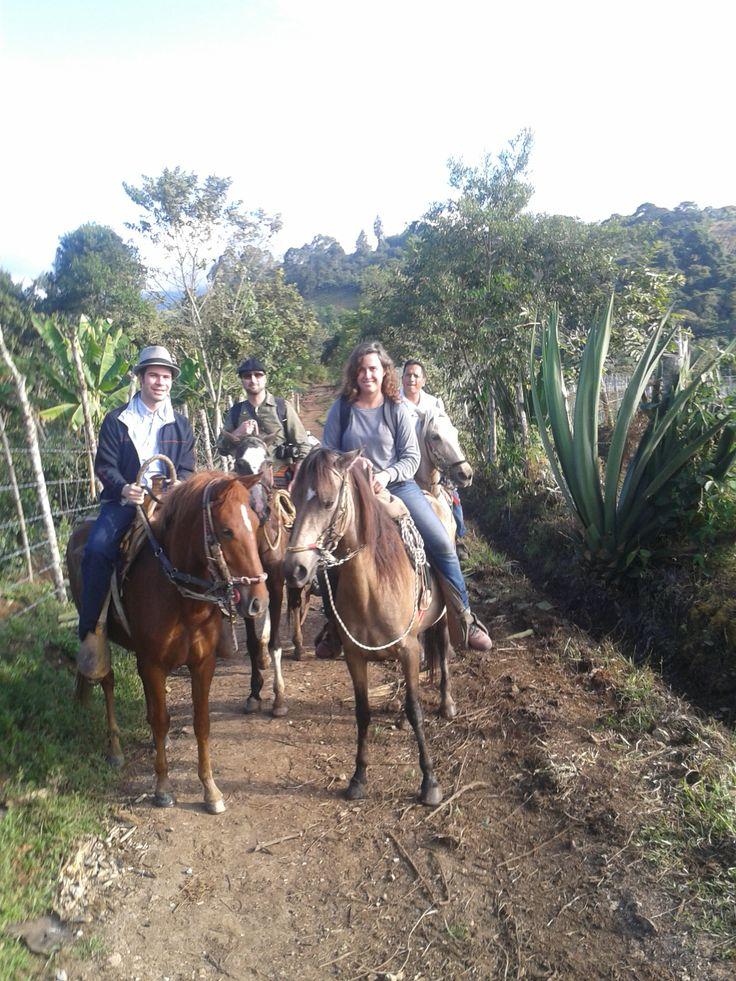 Las cabalgatas en #SanAgustín hacen parte de las experiencias preferidas por los visitantes. Durante el recorrido se disfruta de un buen paisaje, la frescura del campo y la arqueología.