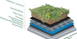 Image result for flat terrace green roof