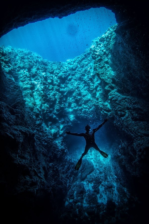 Diving in Tonga, South Pacific