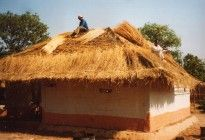 Zambia home being thatched (submitted by Jon Sojkowski)