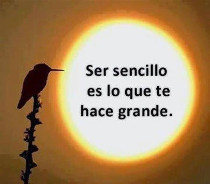.....TODA LA GRANDEZA DE CUALQUIER SER HUMANO PROVIENE DE SU SENCILLEZ Y HUMILDAD...❤️ MIGUEL ÁNGEL GARCÍA