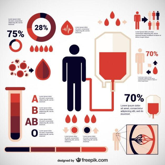 Donate blood infographic Free Vector