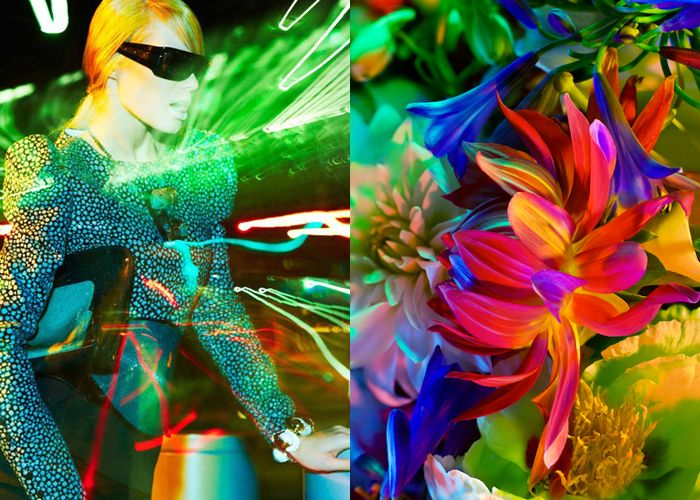 Mini Moodboard: Neon Jungle. electric colors and fluorescent florals.
