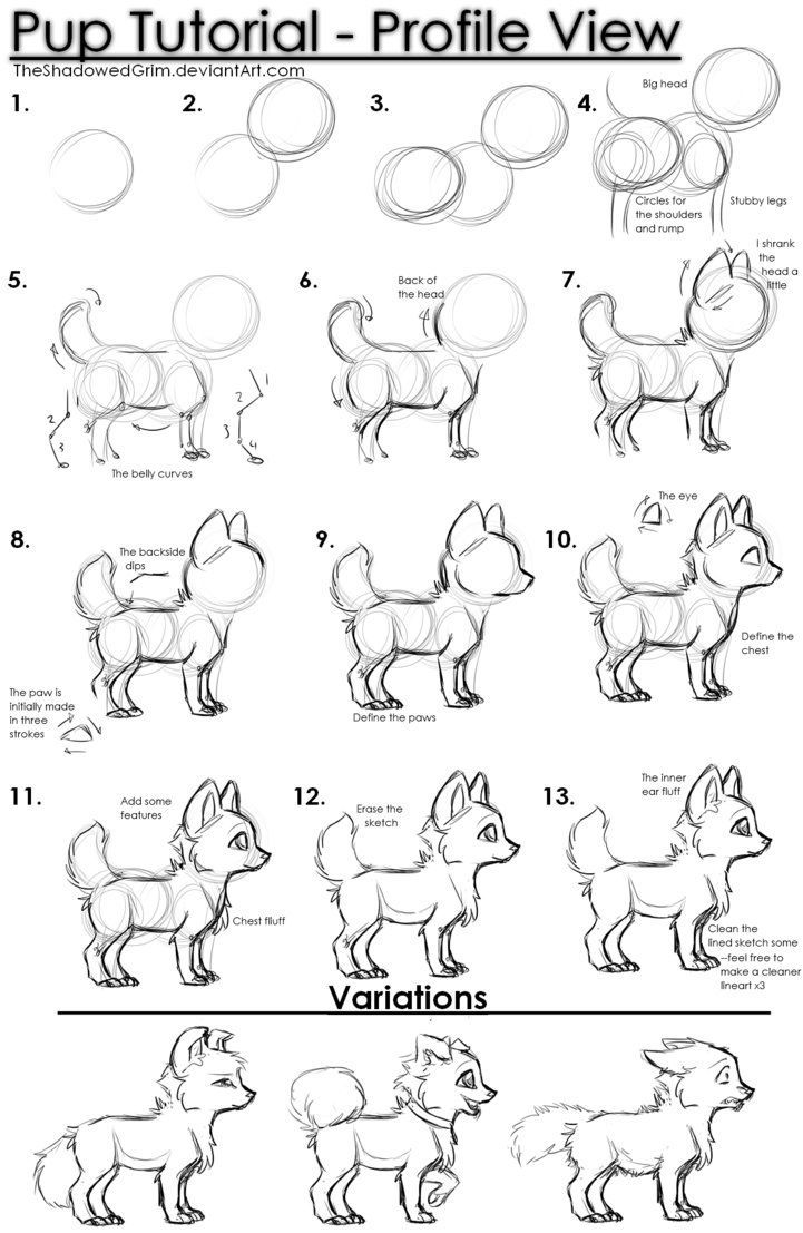 Pup tutorial by TheShadowedGrim on DeviantArt