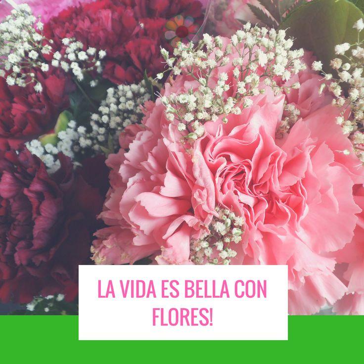 La vida es Bella con #floresjacque Disfrutando en #familia y Esperando la #navidad