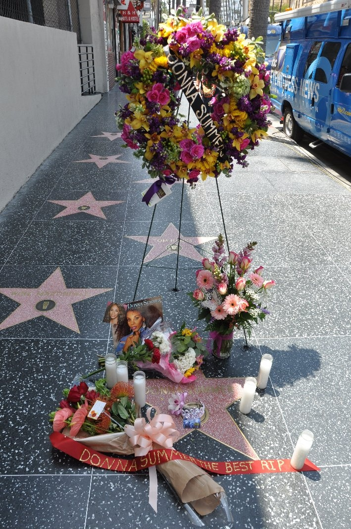 Hollywood Walk of Fame - seeing-stars.com