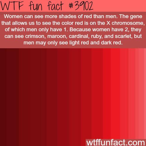 Why women see more shades of red - WTF fun facts