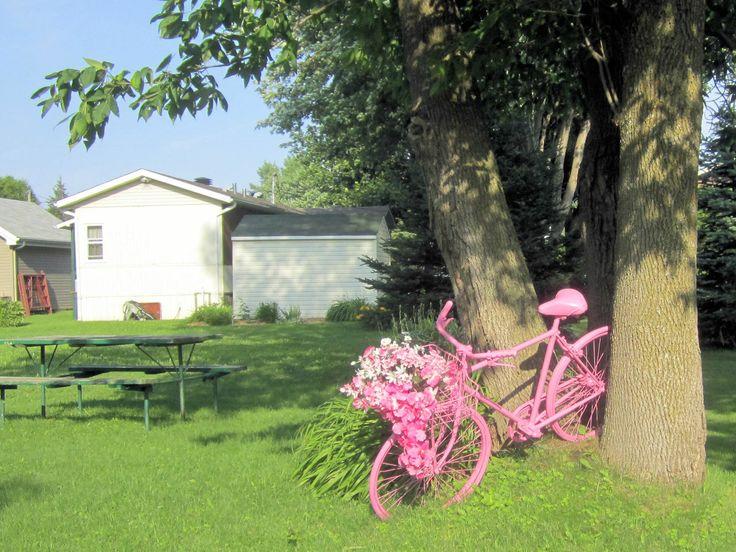 Pink bicycle - Coteaux du lac QC Canada